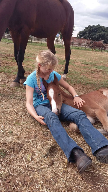 Mountain-View-Stables-with-a-foal